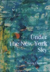 Under The New York Sky