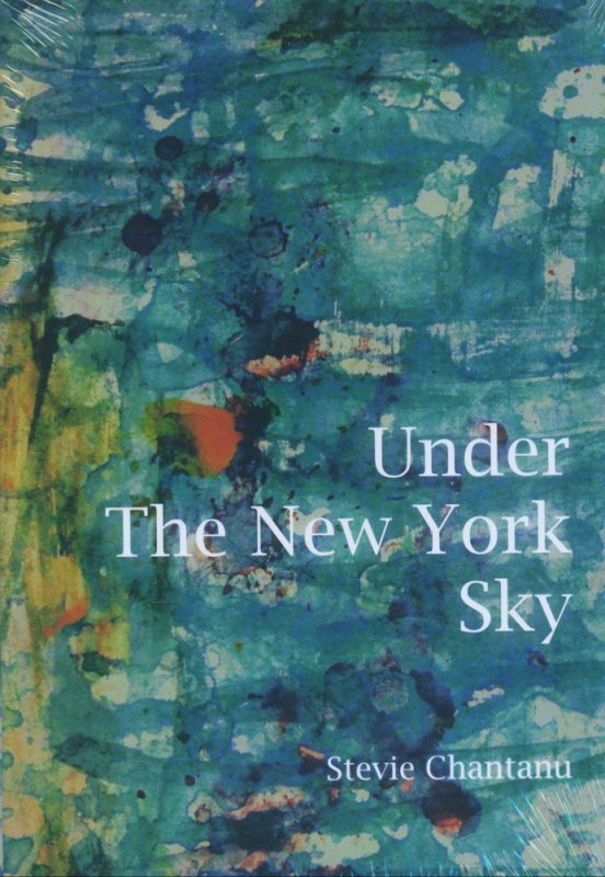 Cover Buku Under The New York Sky