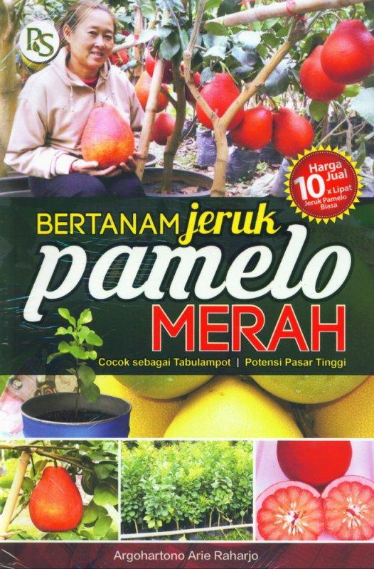Cover Buku Bertanam Jeruk Pamelo Merah