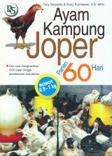 Ayam Kampung Joper Panen 60 Hari