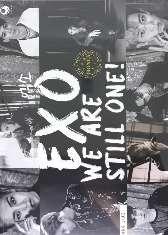 Cover Buku EXO : We Are Still One!