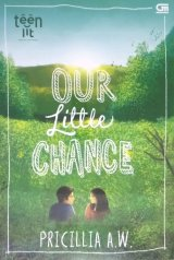 TeenLit: Our Little Chance