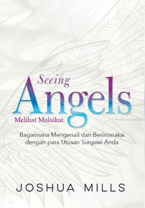 Cover Buku Melihat Malaikat (Seeing Angels)