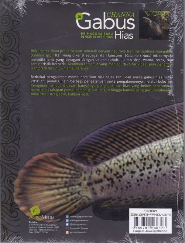Cover Belakang Buku CHANNA :Si Gabus Hias (Promo Best Book)