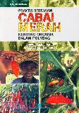 Praktis Bertanam Cabai Merah Keriting Organik Dalam Polybag