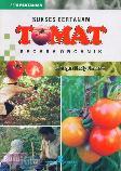 Sukses Bertanam Tomat Secara Organik