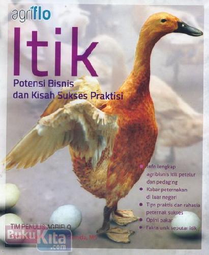 Cover Buku Itik Potensi Bisnis dan Kisah Sukses Praktisi