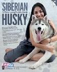 Siberian Husky: Si Pintar yang Mudah Akrab (Promo Best Book)
