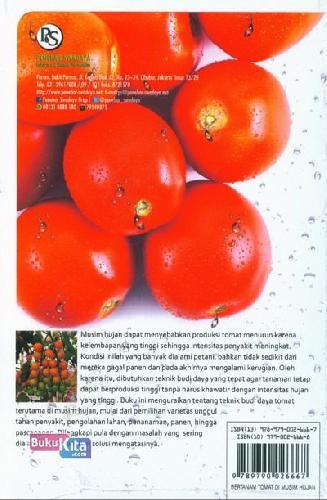 Cover Belakang Buku Bertanam Tomat Di Musim Hujan
