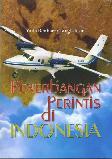 Penerbangan Perintis di Indonesia