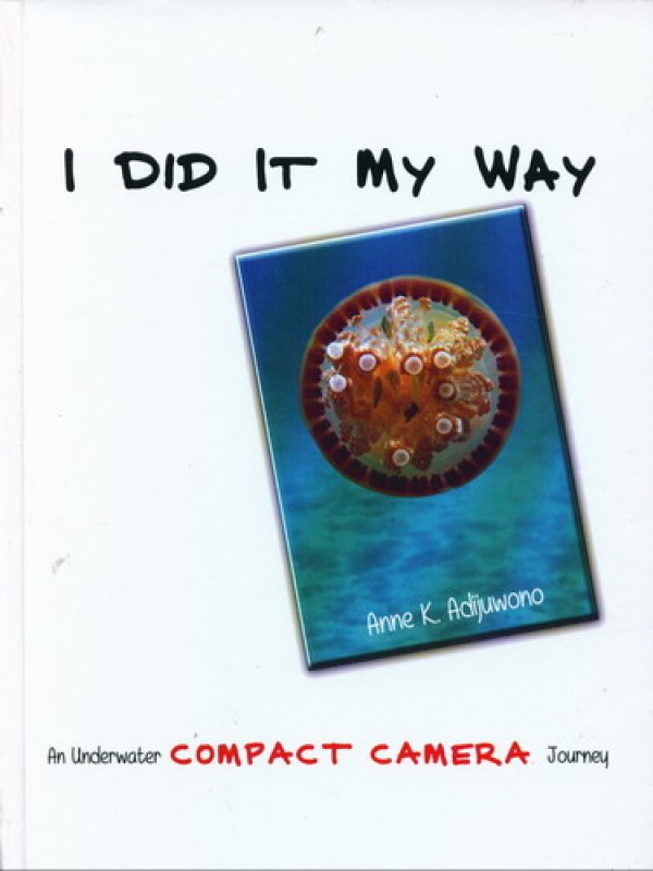 Cover Buku I DID IT MY WAY (Hard Cover)
