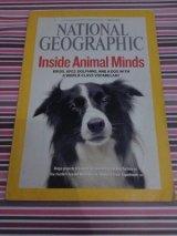 Majalah Animal Minds